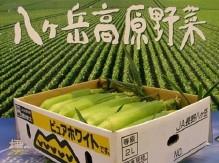 <b>「毎週!おいしい!プレゼント」</b><br />今週のプレゼントは、高原で収穫された甘さバツグンのトウモロコシです。夏の味を、夏の余韻に浸りな &#8230;<br /><span>※プレゼントの受付は終了しました