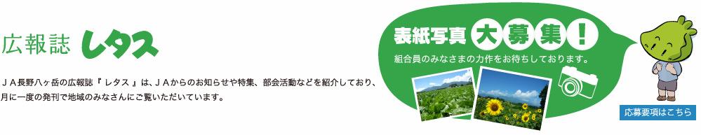 広報レタス:JA長野八ヶ岳の広報誌『 レタス 』は、JAからのお知らせや特集、部会活動などを紹介しており、月に一度の発刊で地域のみなさんにご覧いただいています。【表紙写真】大募集!:組合員のみなさまの力作をお待ちしております。応募要項はこちら