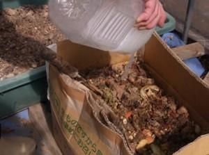 <b>「ダンボールでミネラル豊富な堆肥づくり」</b><br />すでに行われている方もいるでしょうか、生ゴミを使った堆肥づくり。生ゴミは捨ててしまえばただのゴ &#8230;