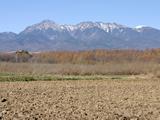 <b>「新海さんちの農事録(第11回)」</b><br />2週間ほど遅れを感じる唐松の紅葉も既に終わりを迎えて、くすんだ色の広葉樹の中、全山あざやかな黄色に染まっています。その林の近く &#8230;