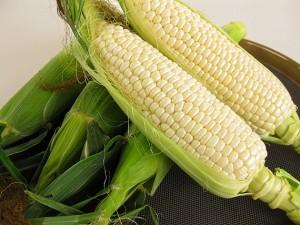 <b>「毎週!おいしい!プレゼント」</b><br />素晴らしい環境で育ったトウモロコシ、それもただのトウモロコシじゃありません、山の真珠とも言われ &#8230;<br /><span>※プレゼントの受付は終了しました
